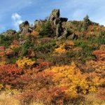 紅葉の季節。